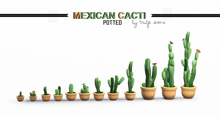 Potted Cacti By Trutje Teh Sims
