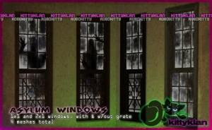 asylum_windows_preview