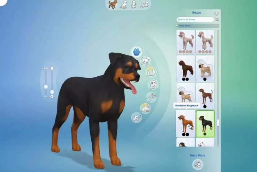 Sims Cats And Dogs Not Installing